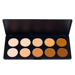 Coastal Scents Camouflage Concealer Palette for Tattoo Coverup