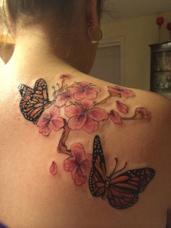 Chrysanthemum Combined With Butterflies